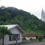 Bananen und Kokuspalmen wohin man sieht. Amerikanisch Samoa war mal der groesste Thunfischlieferant fuer die USA, aber auch diese Industrie wurde eingestellt und so leben fast alle hier von der Regierung