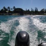 Mit dem Boot zum Schnorcheln auf eine kleine Insel vor Noumea