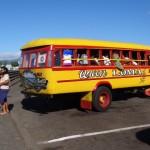 Bunte Schulbusse genauso wie auf american Samoa