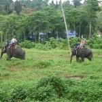 Elefantenreiten ist bei den vorwiegend russischen Touristen hier sehr beliebt.